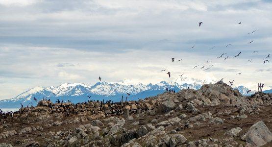 Mountains at Tierra del Fuego