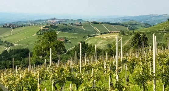 Panoramic view from Piedmont Barolo Hills Wine and Bike Tour