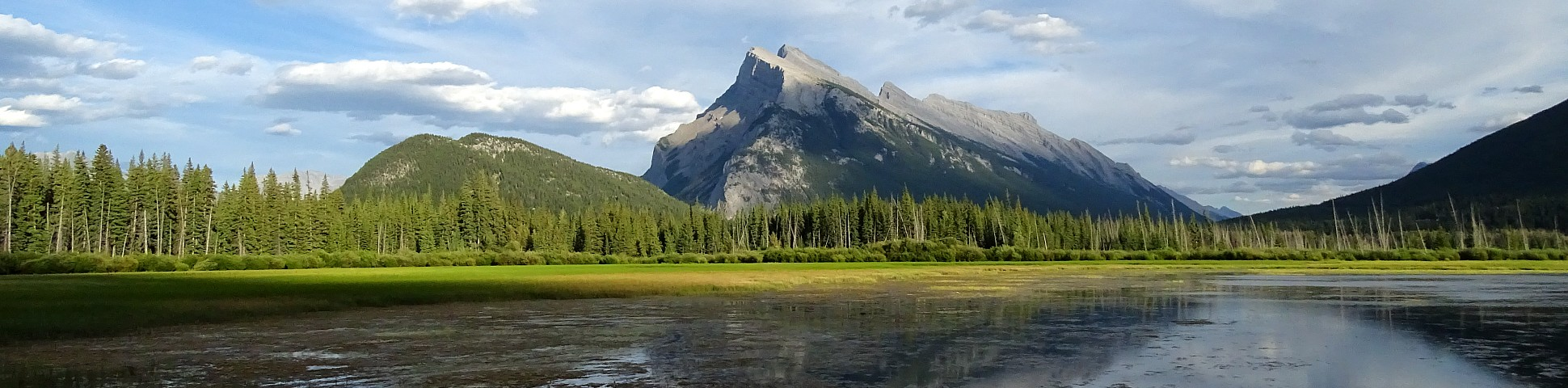 Pond in the foreground with Mount Rundle in the background
