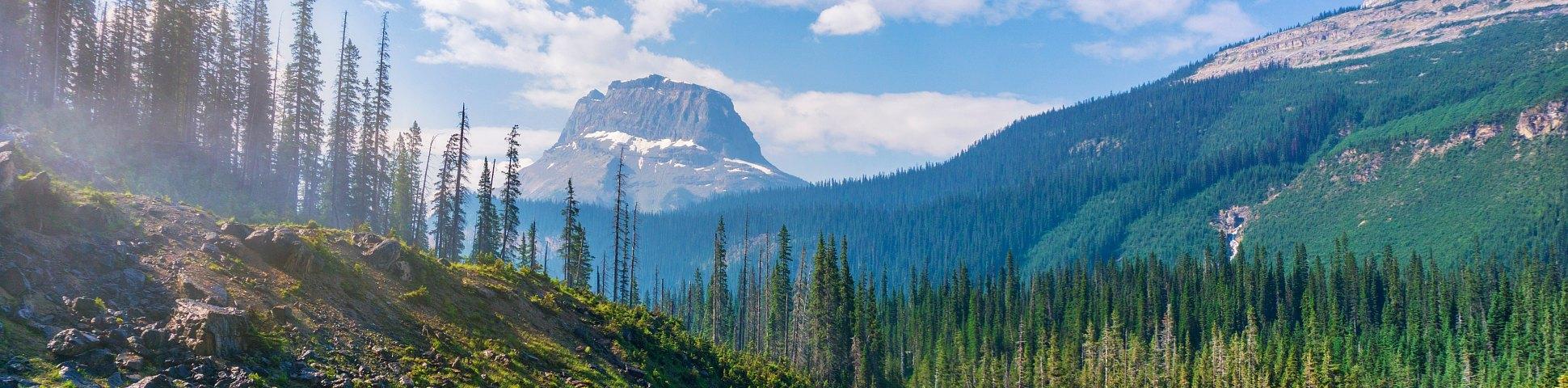 Canadian Rockies, British Columbia