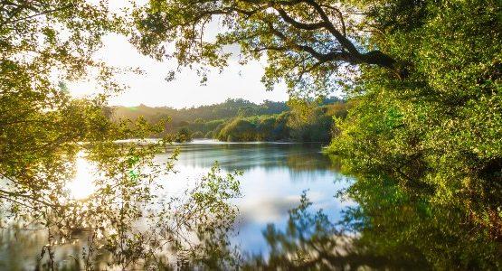Lake in Galicia (Spain)