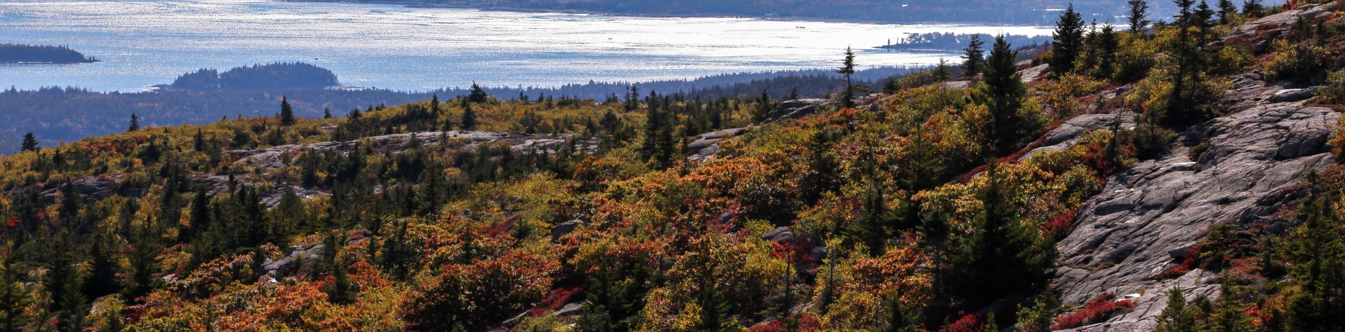 Acadia in New York State