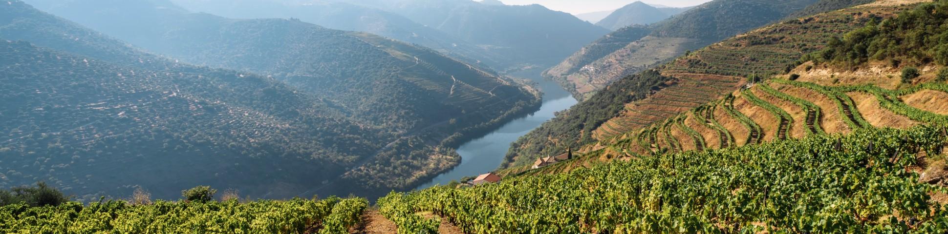 Douro river in Portugal