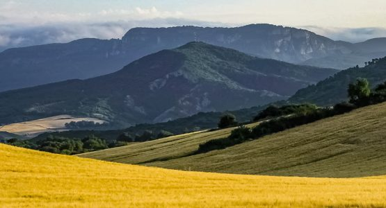 Panoramic view from Self-Guided French Camino Sarria to Santiago Route