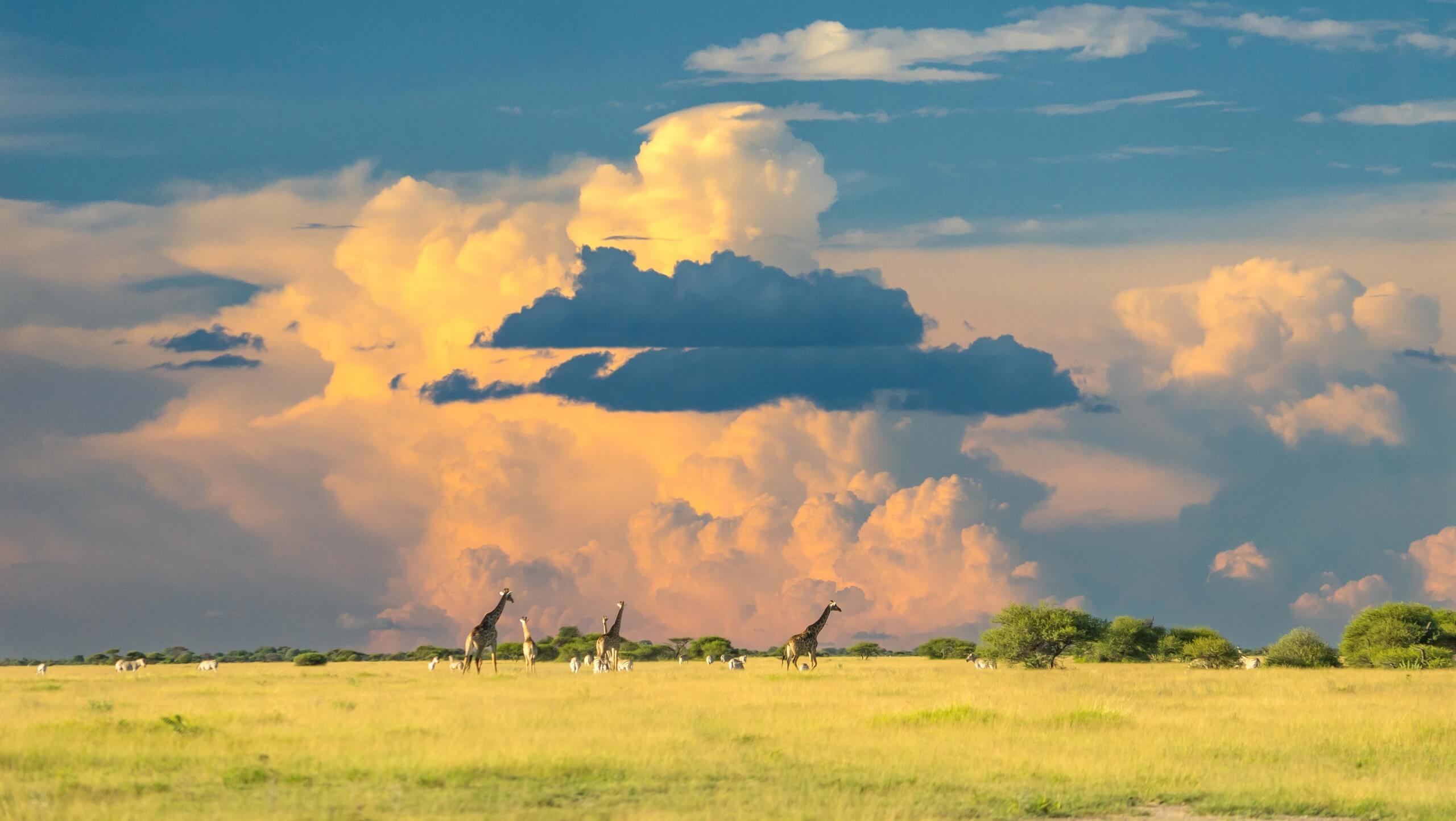 Botswana, Zimbabwe & Namibia Adventure Tour
