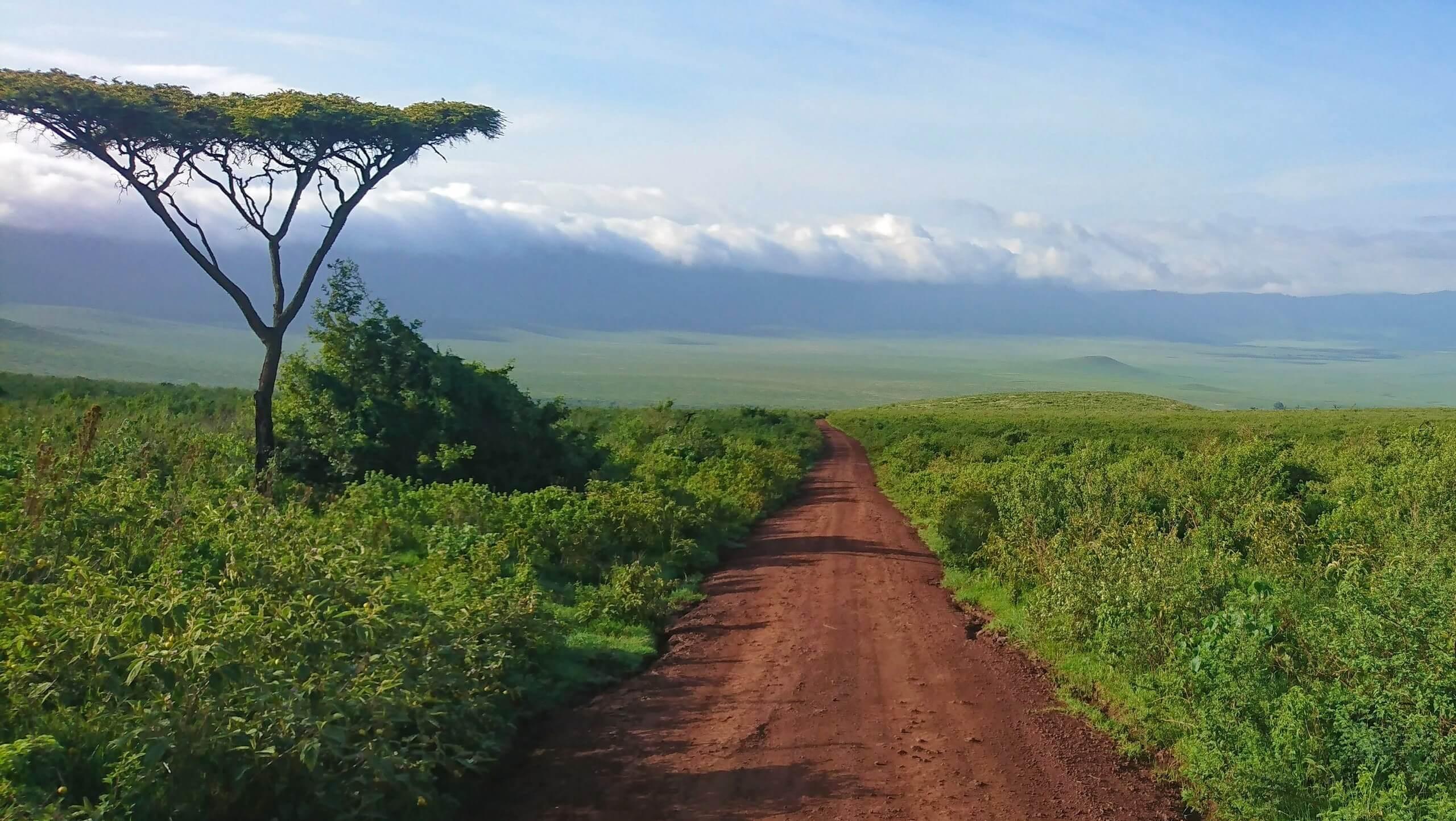 Kilimanjaro to Ngorongoro Cycling Tour