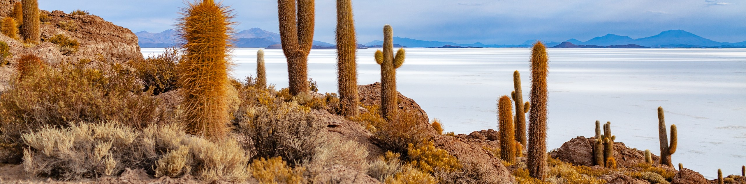 Bolivian Andes Multisport Tour