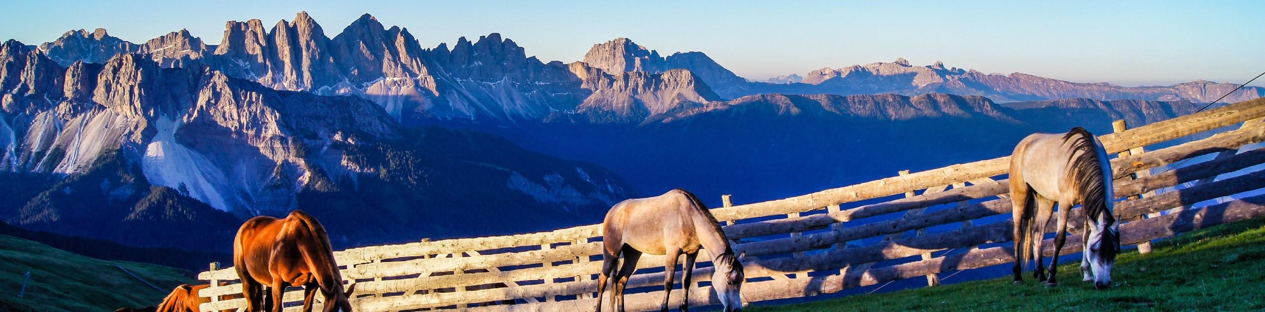 Dolomites Chestnut Route Walking