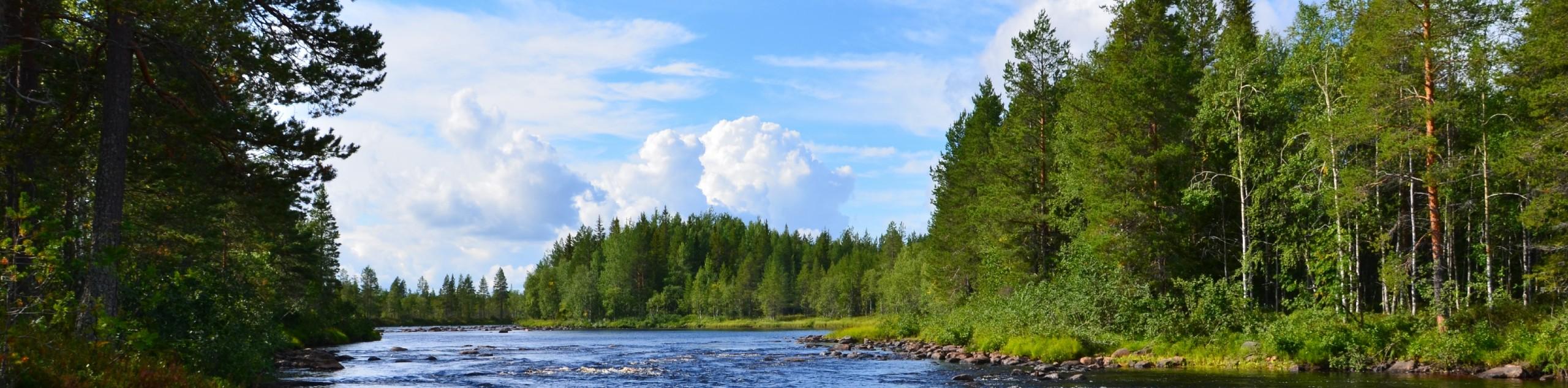 Karelia wilderness in Russia
