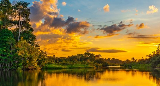 Panoramic view from Amazon River Cruise (Ecuador)