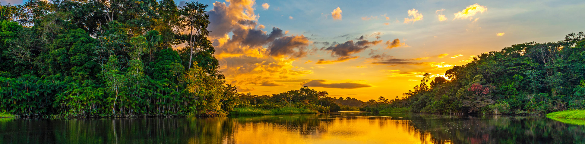 Panoramic view from Amazon River Cruise (Ecuador)