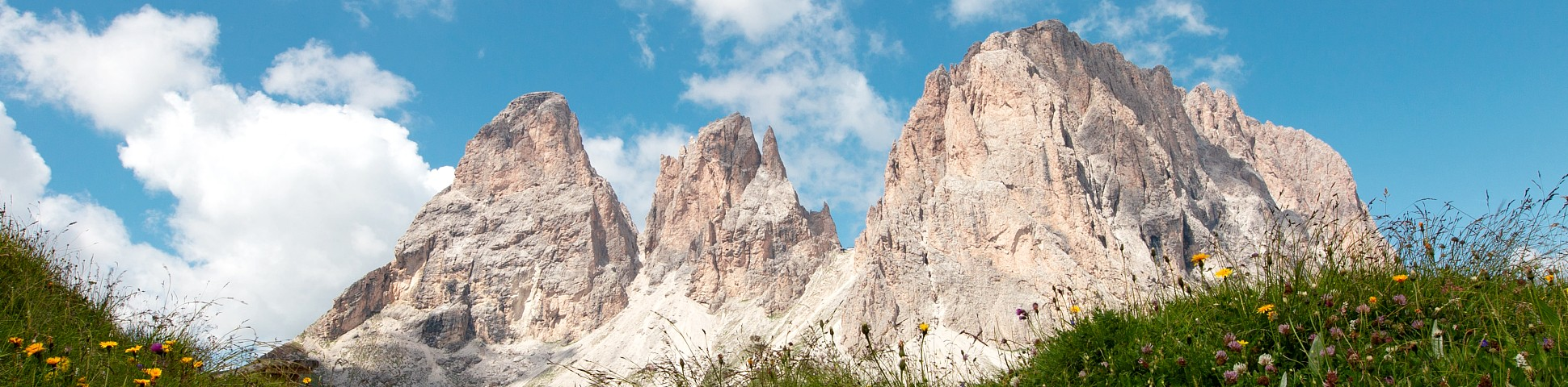 Three peaks in the dolomites with grass and wildflowers flowers below
