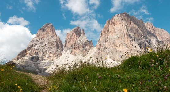 three mountain summits in the dolomites with grass and wildflowers flowers below