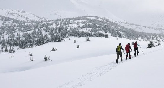 Skiing in backcountry