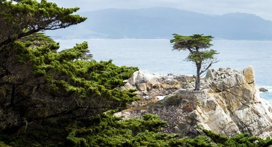 Beautiful bay view along the coast of California