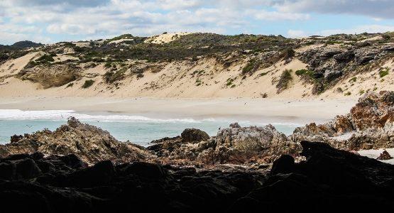 Beautiful beach at Western Cape (South Africa)