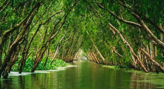 Mekong Delta (Vietnam)
