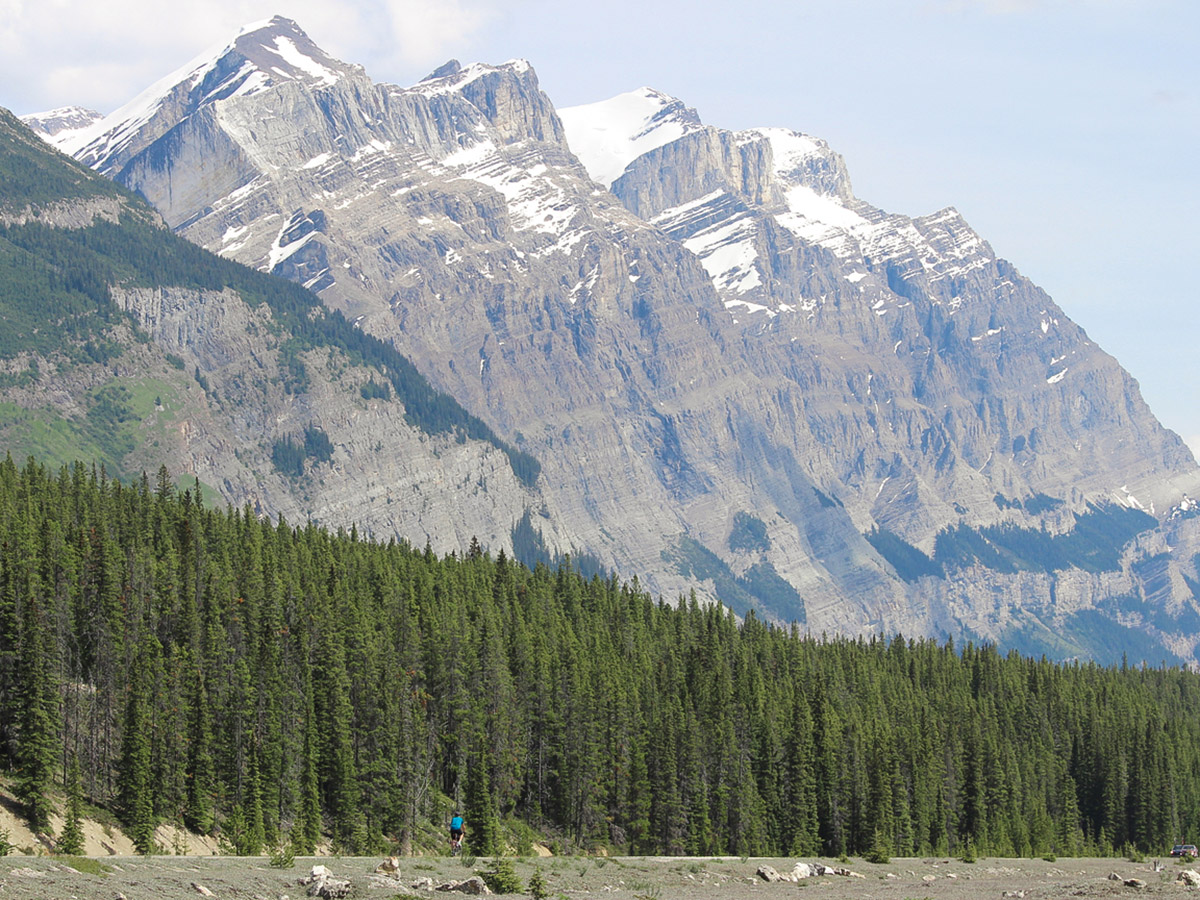 Lone biker on guided cycling tour from Jasper to Banff in Canada