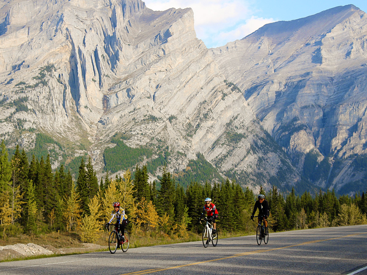 Bikers going towards Banff on guided cycling tour from Jasper to Banff in Canada