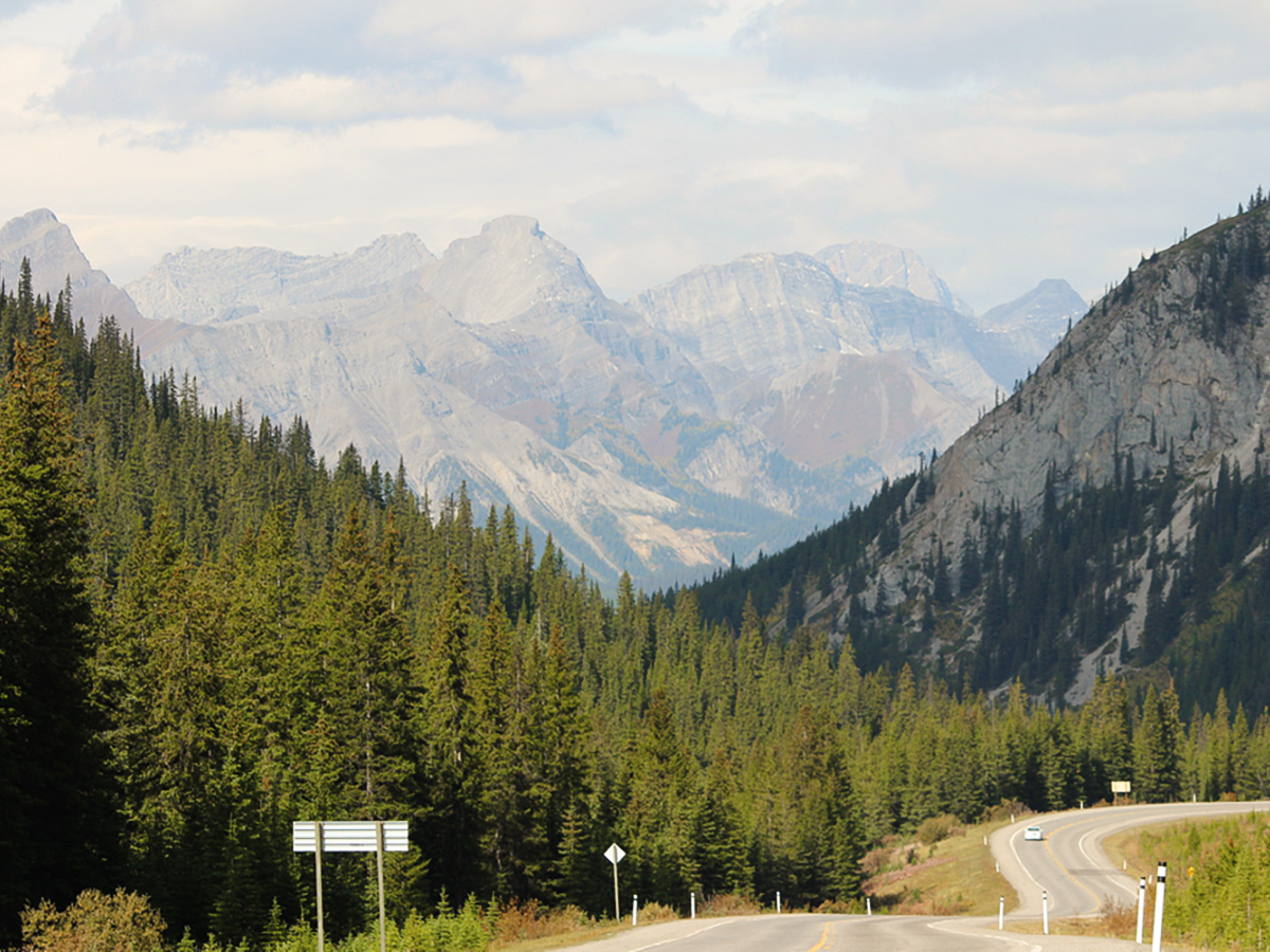 Trail towards Banff on guided cycling tour from Jasper to Banff in Canada