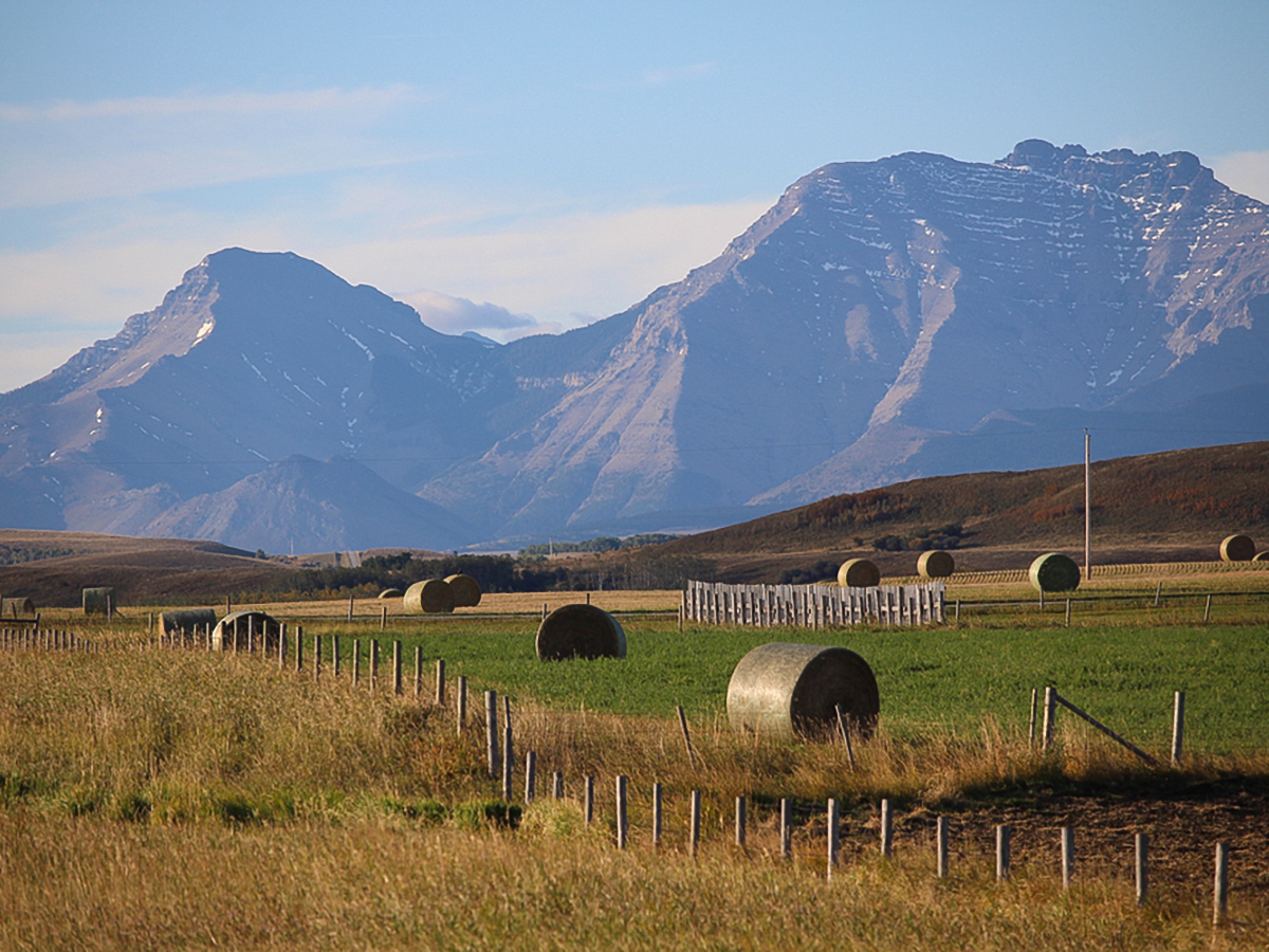 Canadian countryside views on guided cycling tour from Jasper to Banff in Canada
