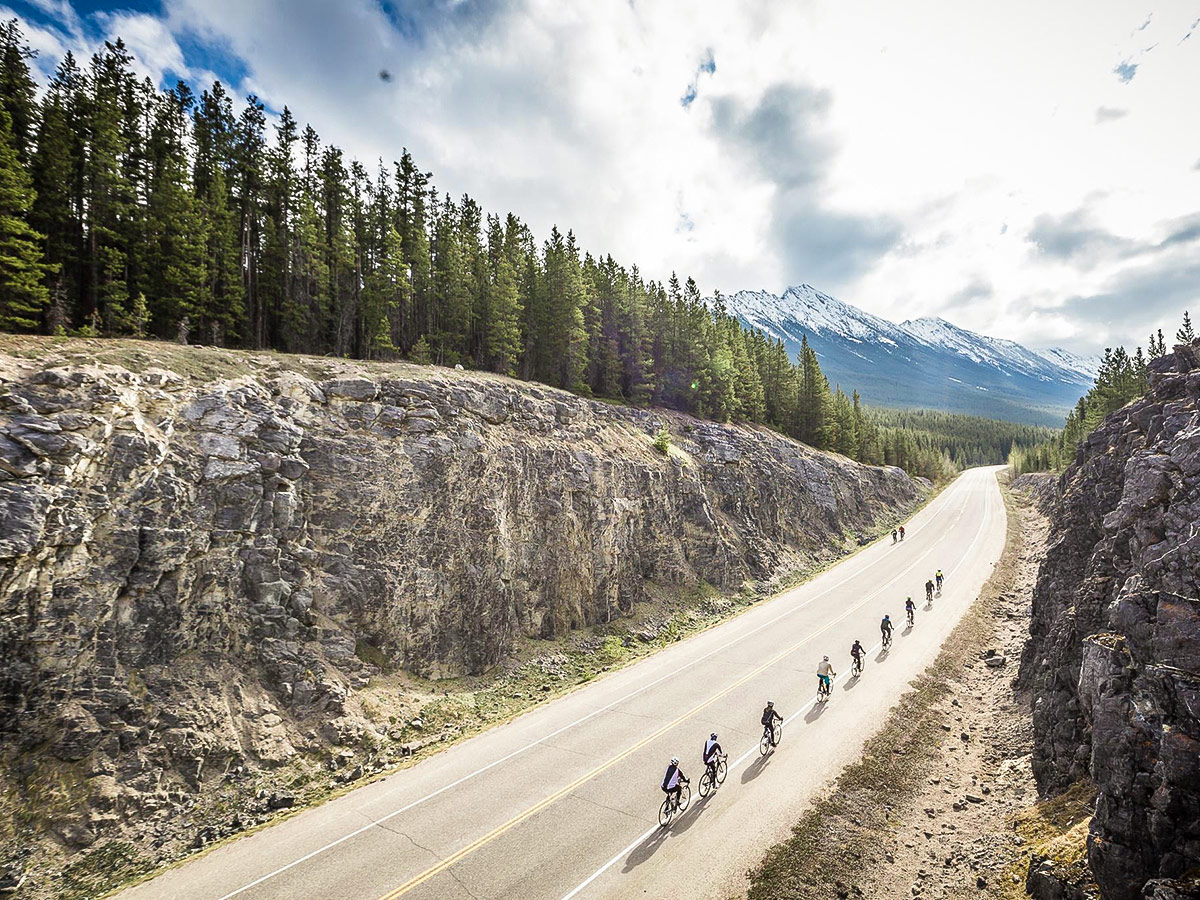 Group of bikers on Icefields Parkway on guided cycling tour from Jasper to Banff in Canada