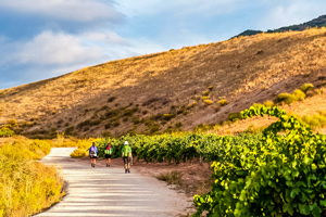 Complete Camino Frances tour teaser