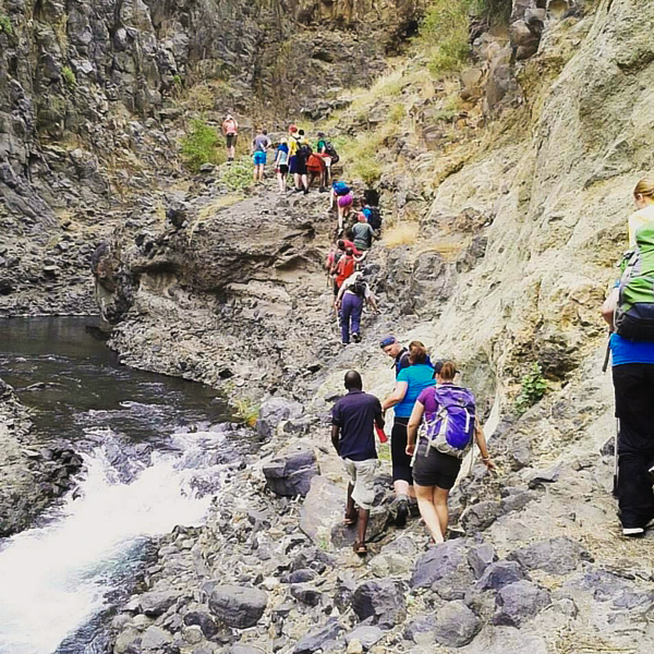 Group of hikers trekking on guided Kilimanjaro trek on Machame Route in Tanzania
