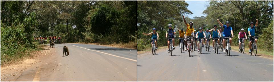Group of bikers on guided Kilimanjaro to Ngorongoro Cycling Tour