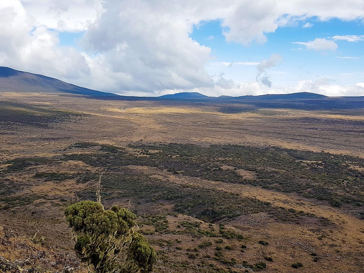 Trekking from Shira to Barranco on Kilimanjaro trek on Lemosho Route in Tanzania