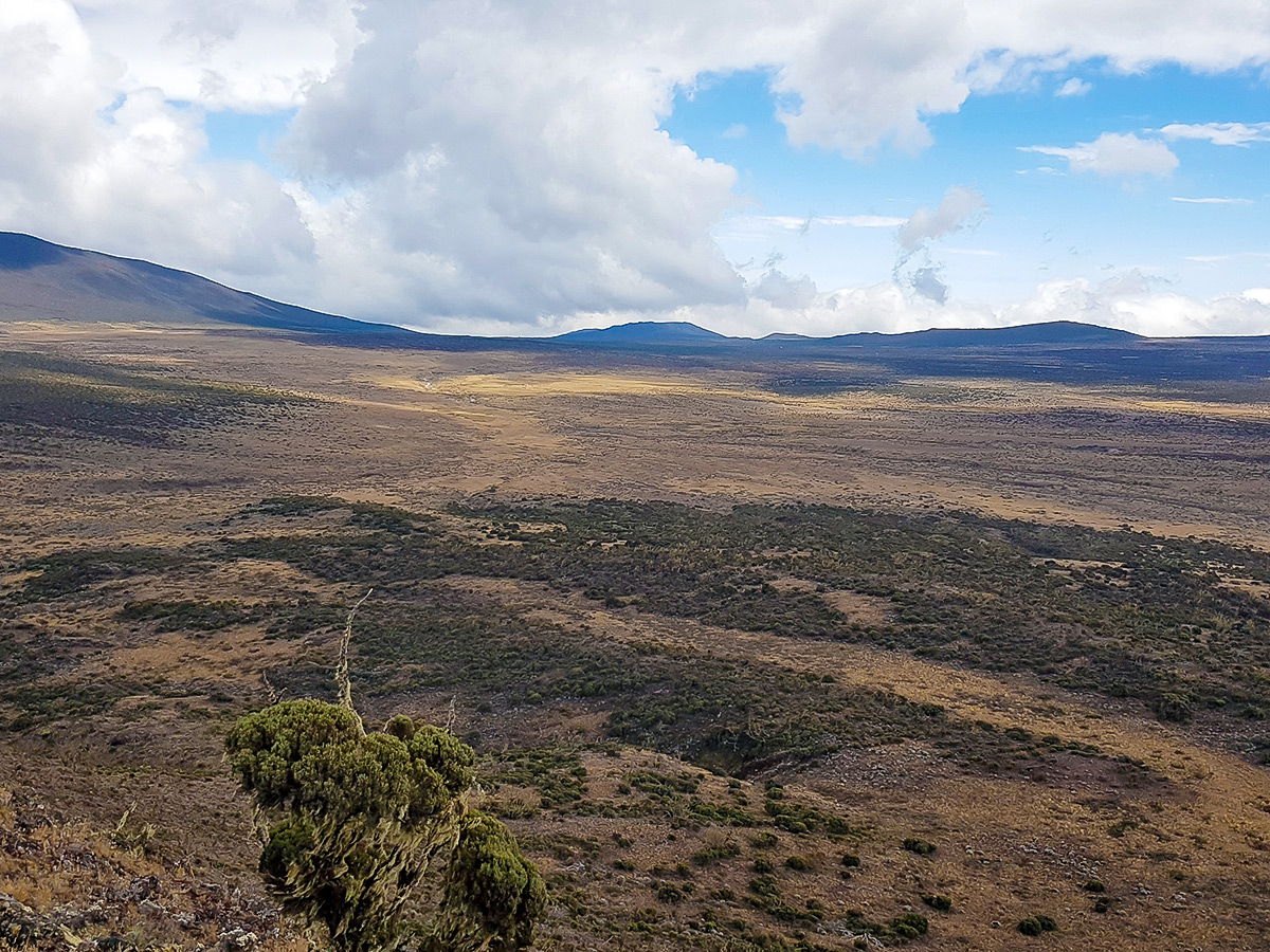 Looking over the wastelands on guided Kilimanjaro trek on Lemosho Route in Tanzania