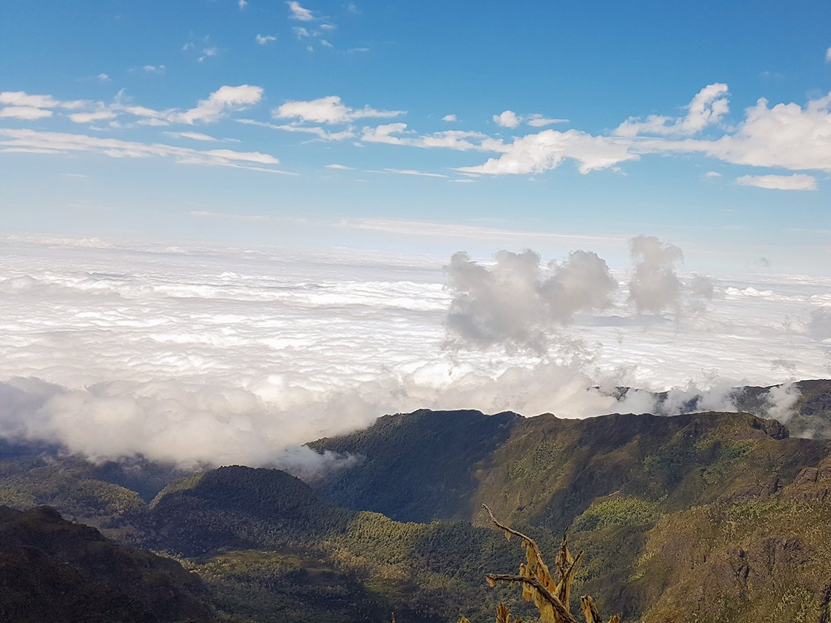 Looking above the clouds on guided Kilimanjaro trek on Lemosho Route in Tanzania