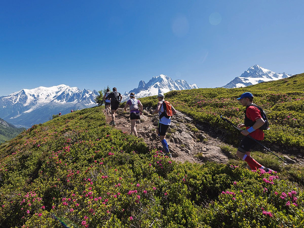 Group of hikers on Tour de Mont Blanc in French Alps