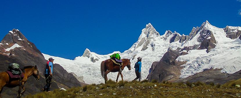 Horses on Alpamayo trek in Cordillera Blanca, Peru