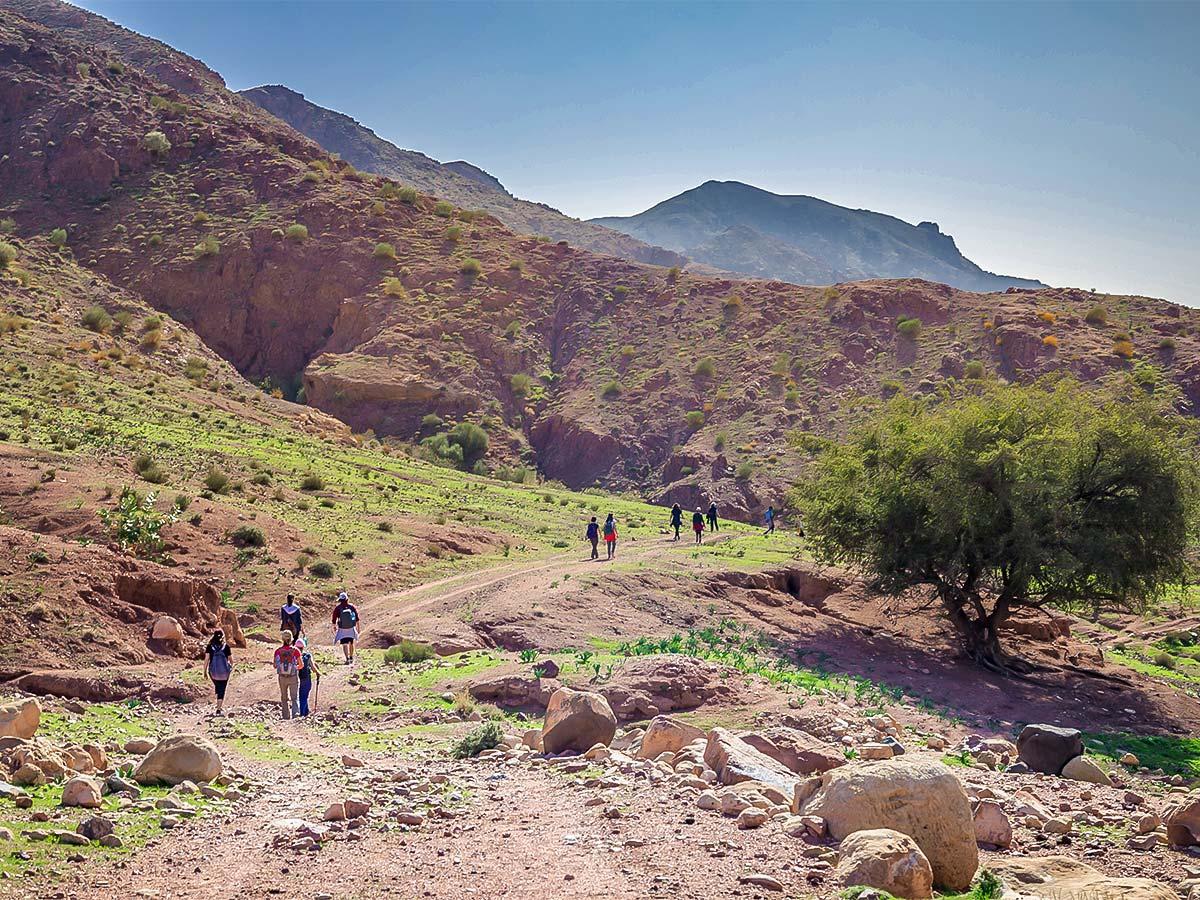 Beautiful desert hills on Dana to Petra Trekking Tour in Jordan