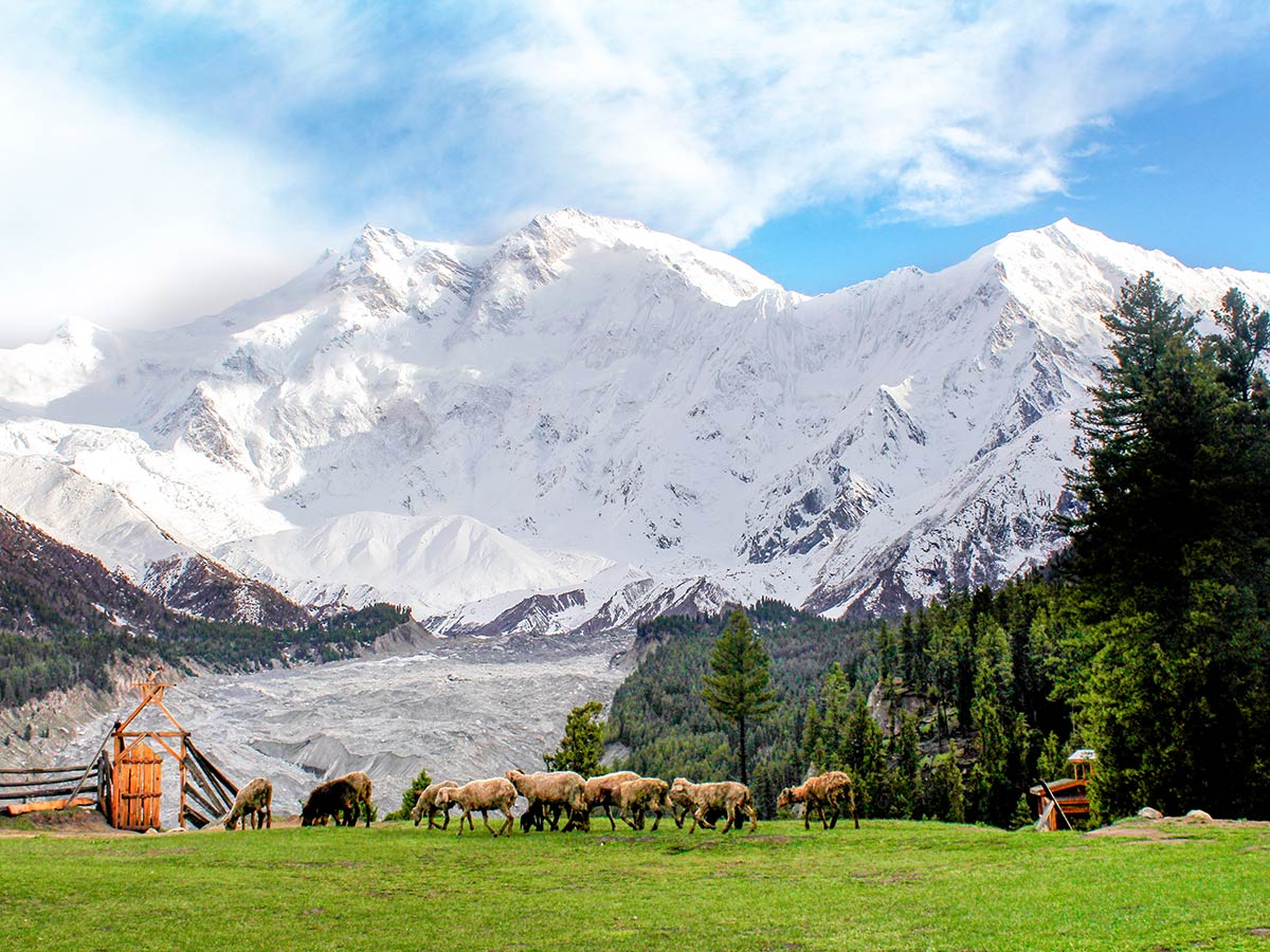 Glacier below Nanga Parbat on Fairy Meadows and Nanga Parbat Base Camp Tour in Pakistan