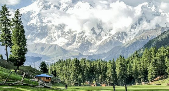 Amazing views of guided trekking tour to Fairy Meadows in Pakistan
