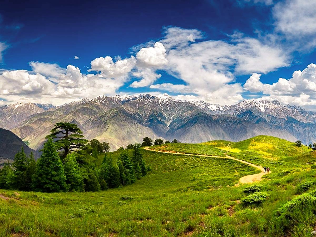 Gol National Park on Chitral Valley Overland Tour in Pakistan