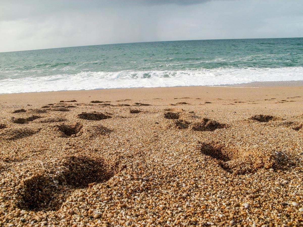 Cornwall Loe Bar Footsteps in Sand