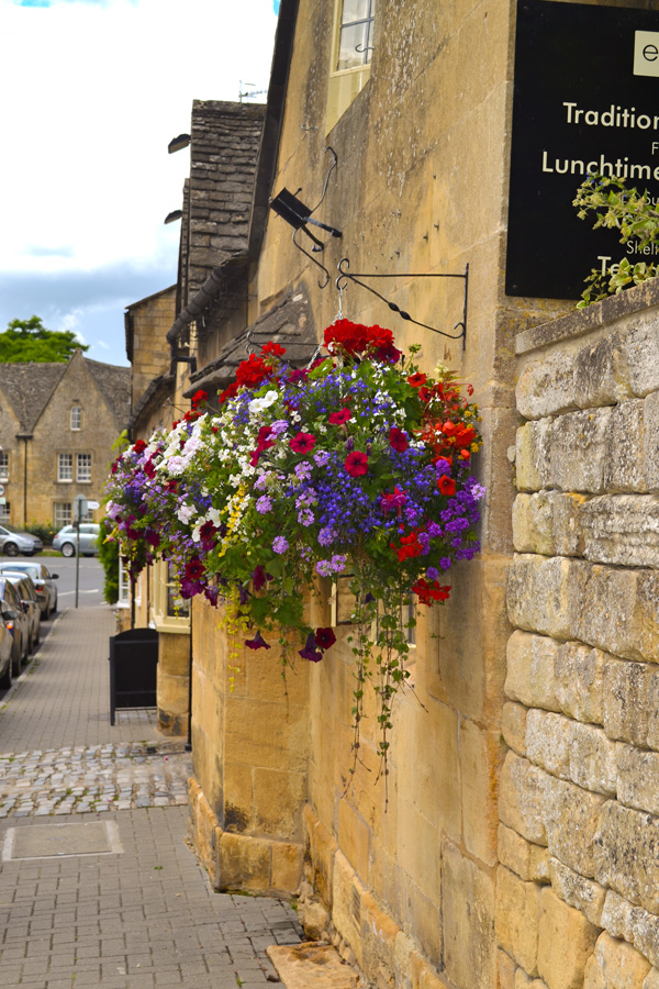 Chipping Campden Flowers