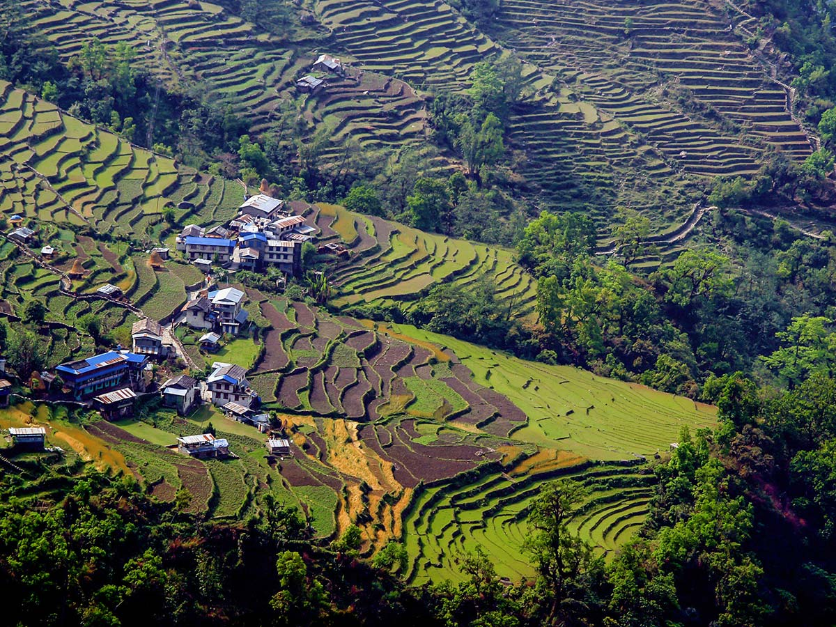 Farmlands on Annapurna Base Camp Guided Trek in Nepal
