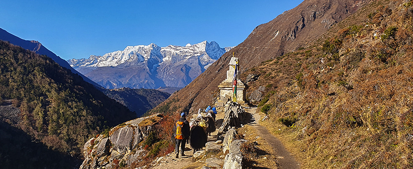 Annapurna and Everest Luxury Lodge Trek