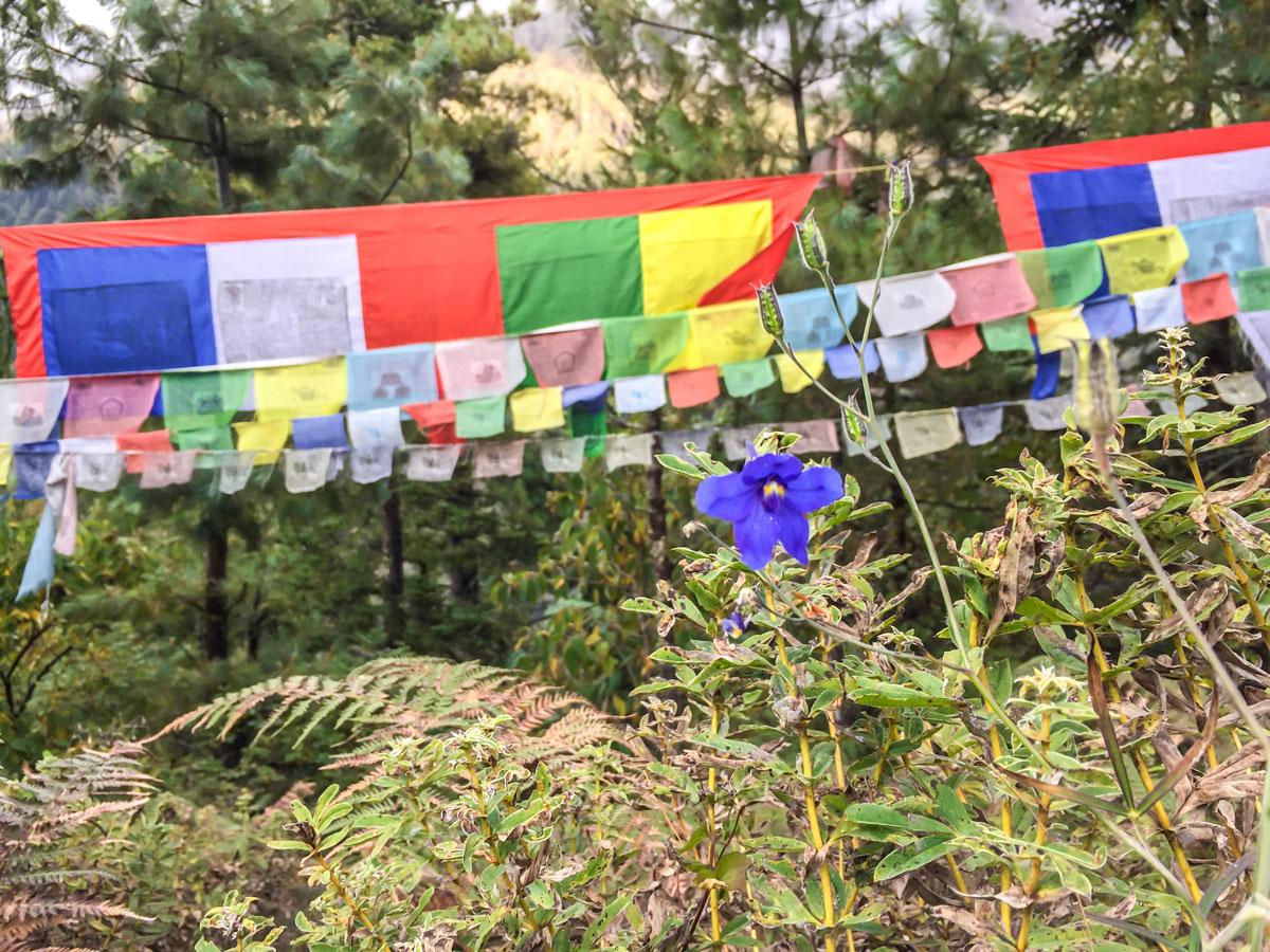 Prayer flag on Manaslu Circuit trek in Nepal