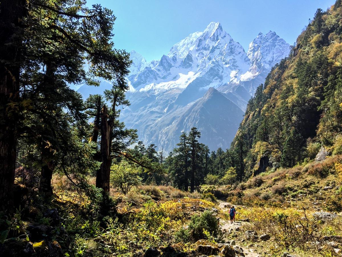 Manaslu Circuit trek in Nepal is one of the best multi day hikes in Himalayas