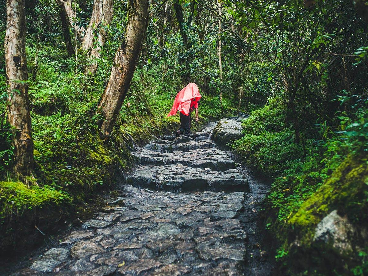 Stairs going up on Inca Trail to Machu Picchu near Cusco Peru