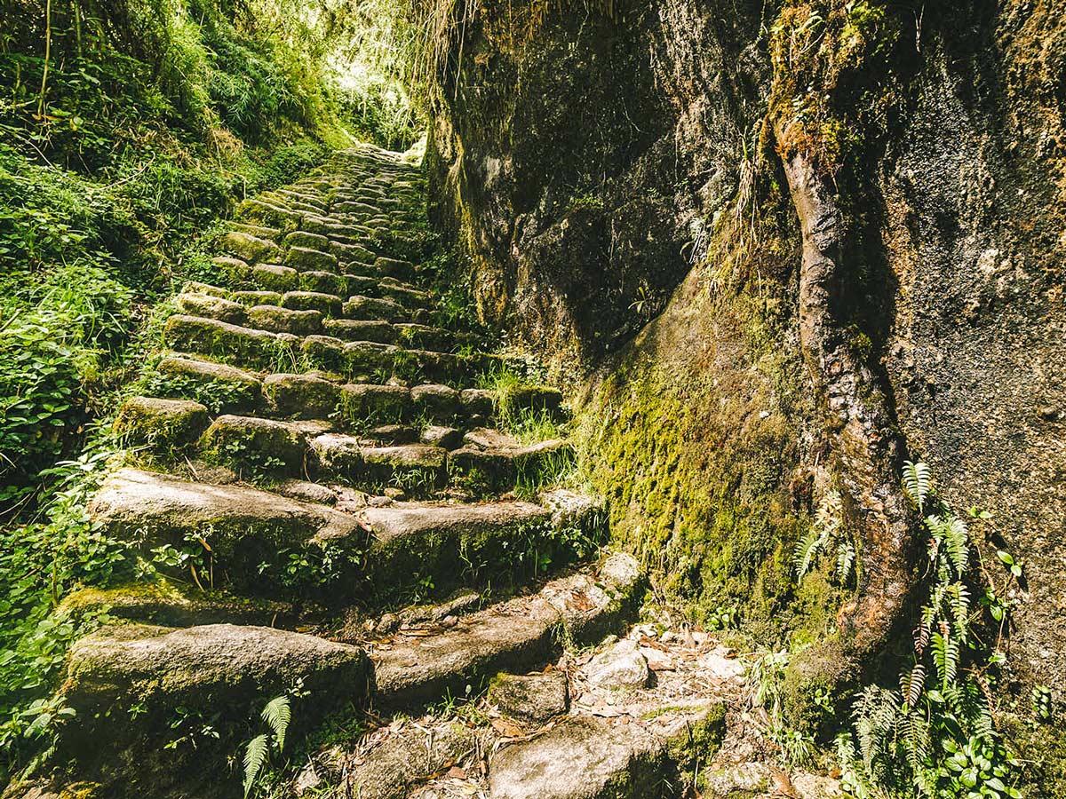 Mossy stairs on Inca Trail to Machu Picchu near Cusco Peru
