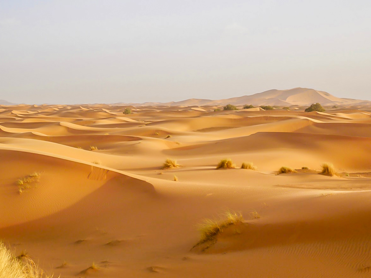 Erg Chigaga Tour in Morocco is an amazing tour for those willing to see the best of Sahara Desert