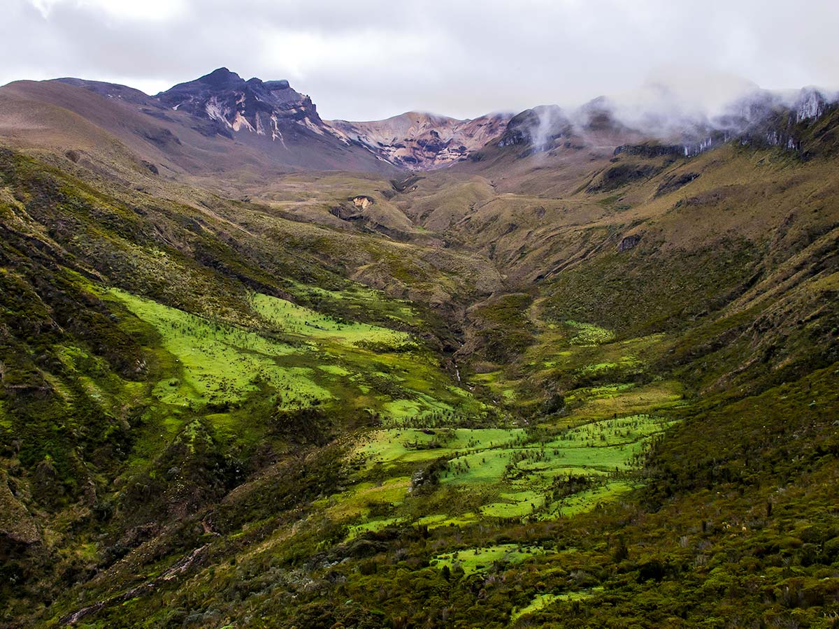 Colombian Nature is a true gem of South America and can be trekked on Guided Los Nevados Tour