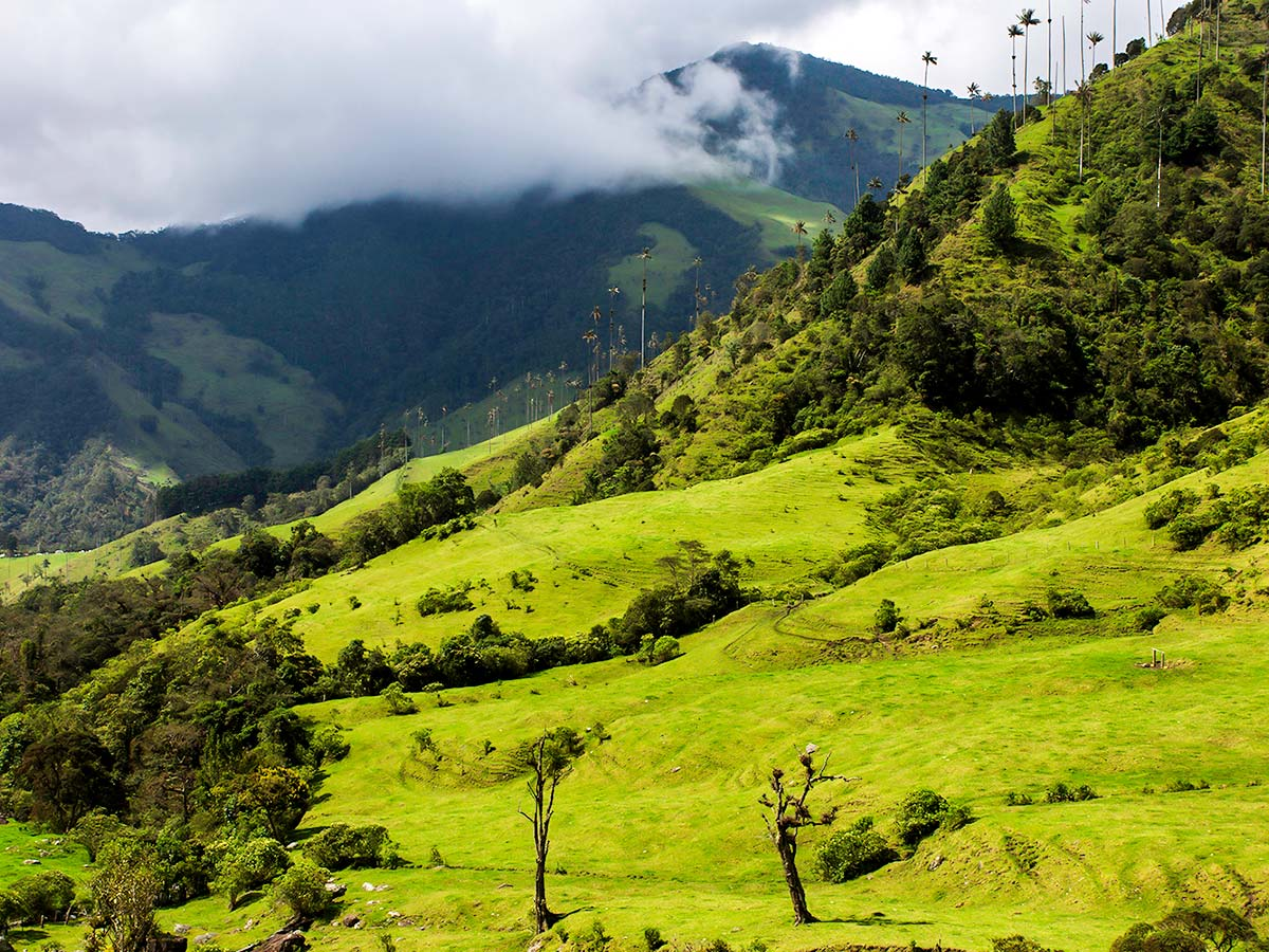 Los Nevados Trek in Colombia is a great introductional tour to Colombian Andes
