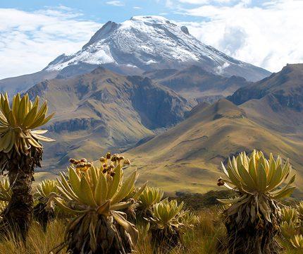 Los Nevados Hiking Tour